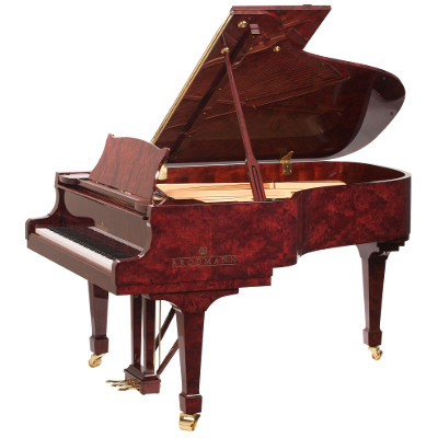 Brodmann Professional Edition piano